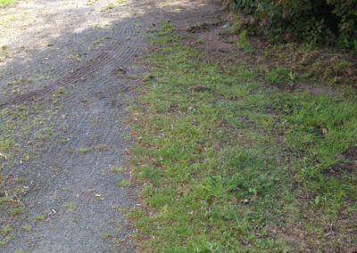 Schlosspark mit federzinkenegalisator voss (5)